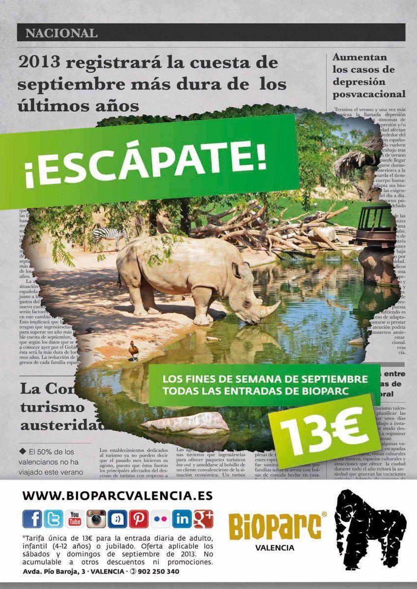 Bioparc valencia comienza septiembre con todas las - Bioparc precios valencia ...