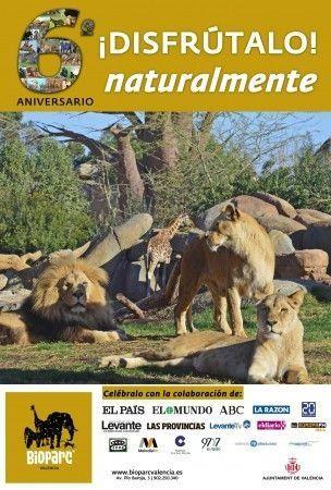 Bioparc valencia celebra el 6 aniversario con todos los - Bioparc precios valencia ...