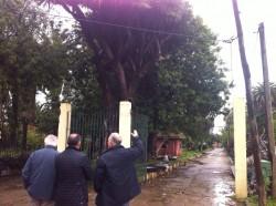 Rain Forest comienza el proyecto del nuevo zoológico de Casablanca - Marruecos
