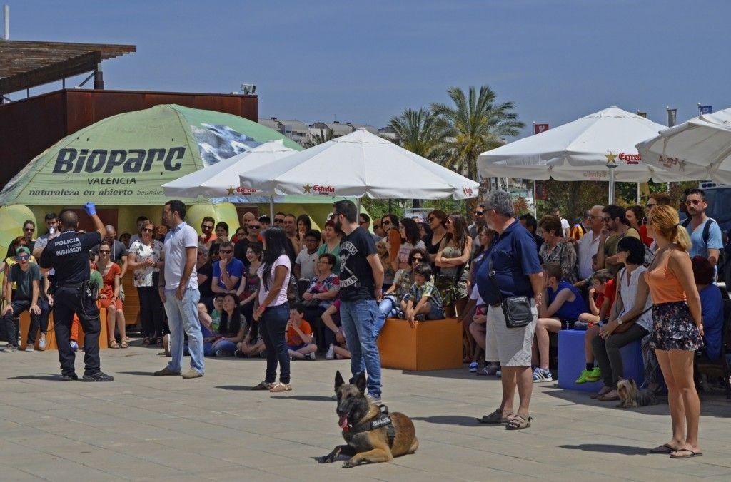 Unidad Canina de la Policia Local Burjassot - URCO - BIOPARC Valencia - redes