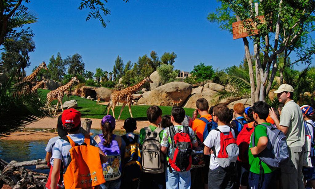 El curso escolar también empieza en BIOPARC Valencia, la gran aula de naturaleza