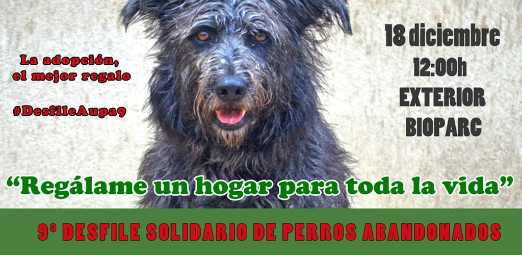 El desfile solidario de perros de AUPA y BIOPARC de Navidad será el 18 de diciembre