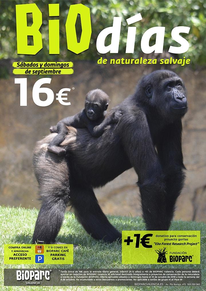 Promoción BIOdías 2018 - BIOPARC Valencia