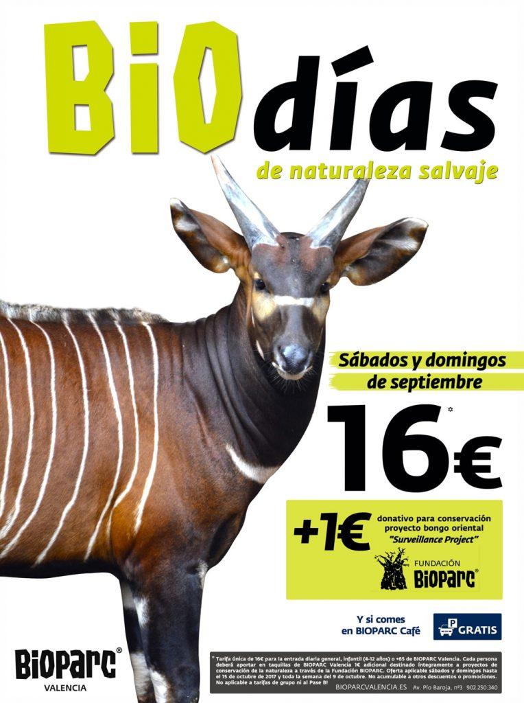 Bioparc valencia empieza septiembre con la promoci n biod as - Bioparc precios valencia ...
