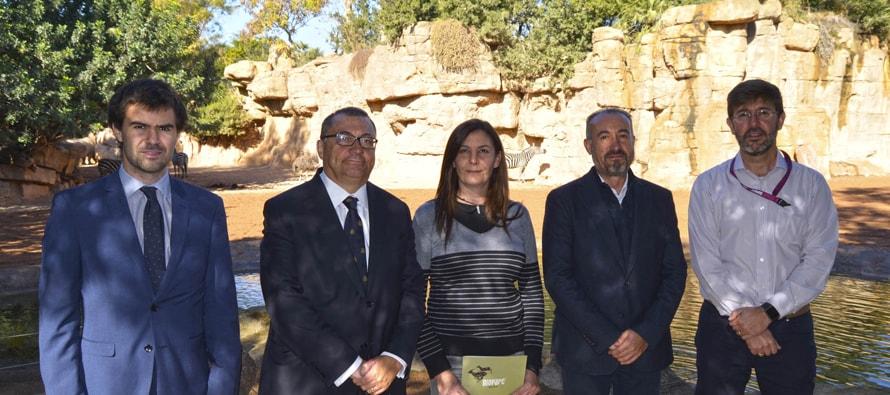 Fundación BIOPARC y Fundación DAMM reafirman su compromiso con la conservación de la naturaleza
