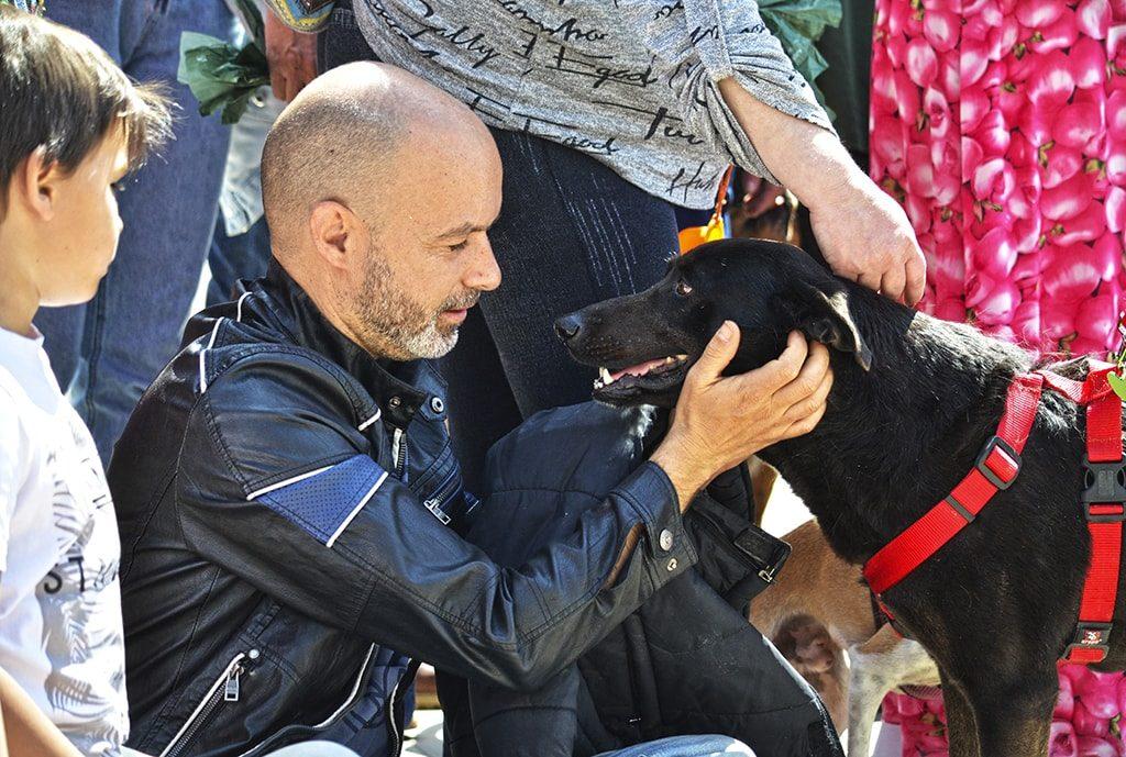 El desfile AUPA/BIOPARC punto de encuentro y altavoz del bienestar animal