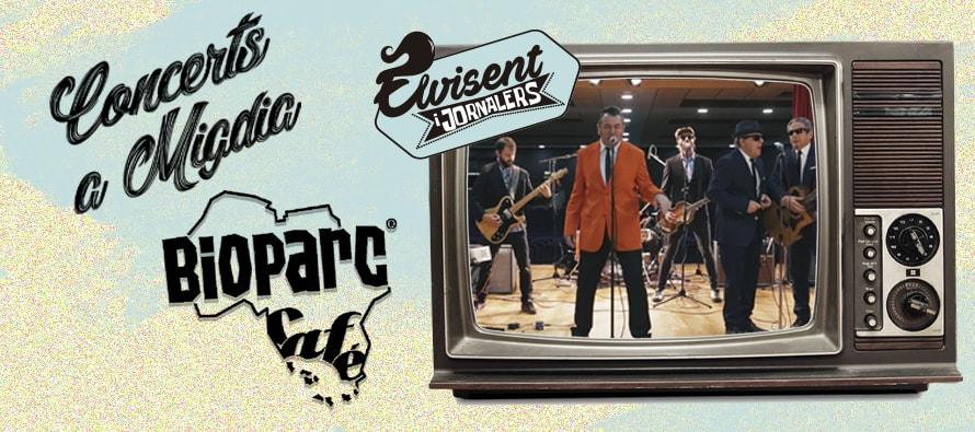 concierto gratuito homenaje al rey del rock con ELVICENT i Jornalers en BIOPARC Valencia