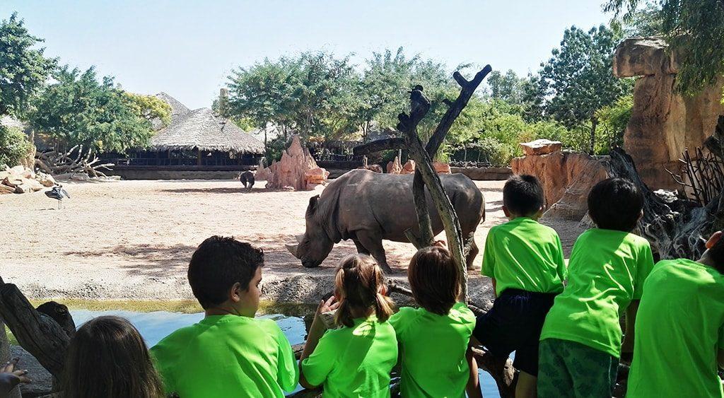Expedición África Verano 2018 - escuela de vacaciones de BIOPARC - niños y niñas en la Sabana