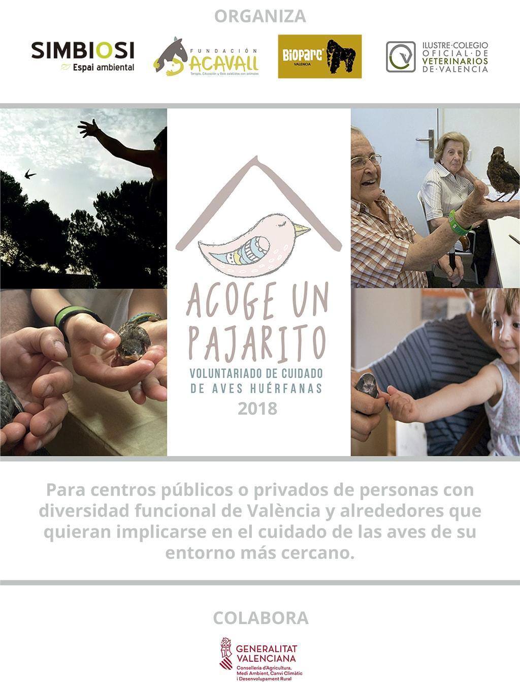 Cartel Acoge Un Pajarito 2018 - web