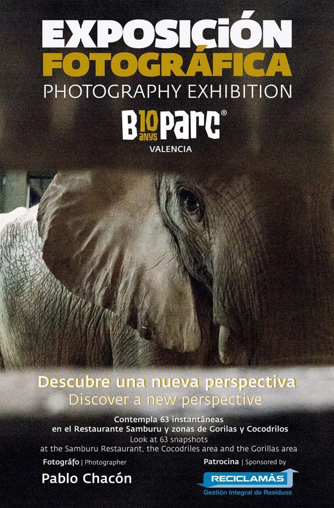 Exposición fotográfica DESCUBRE UNA NUEVA PERSPECTIVA