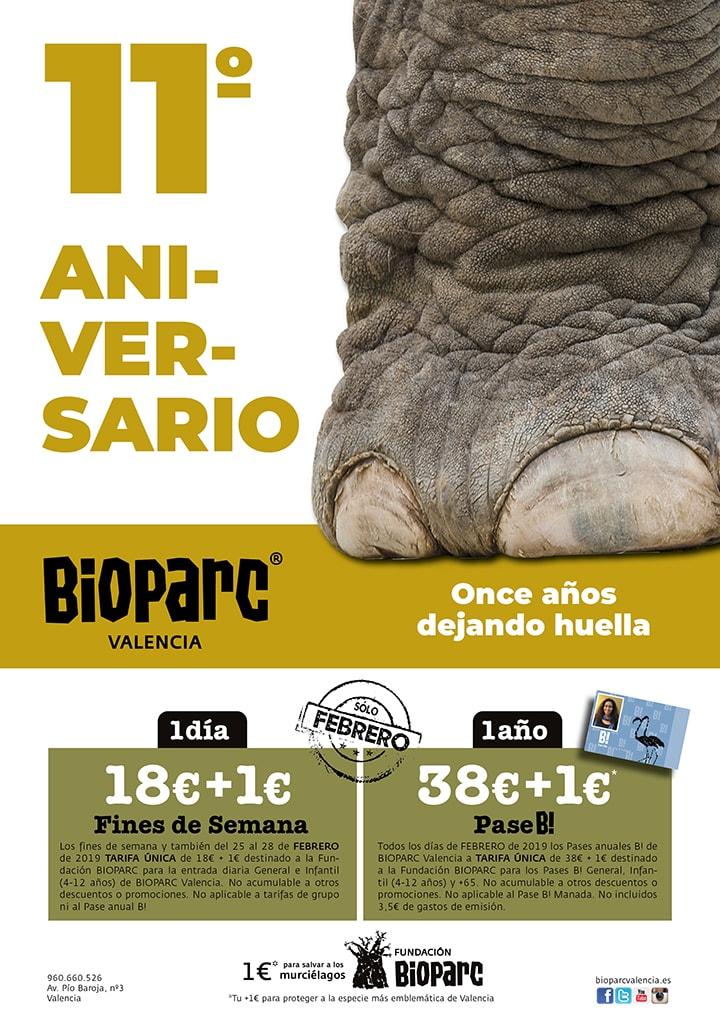 11º Aniversario BIOPARC Valencia - Once años dejando huella