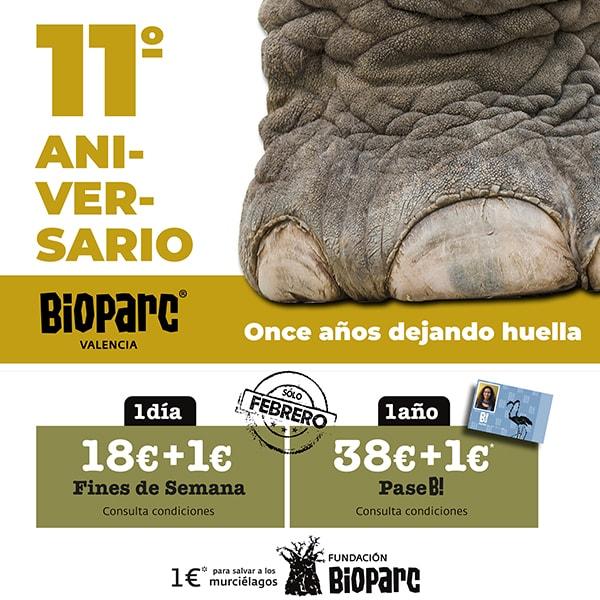 11º Aniversario BIOPARC Valencia
