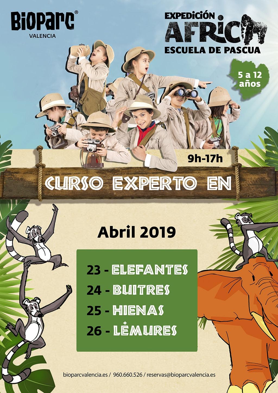 Curso experto en animales - Pascua 2019 - Del 23 al 26 de abril.