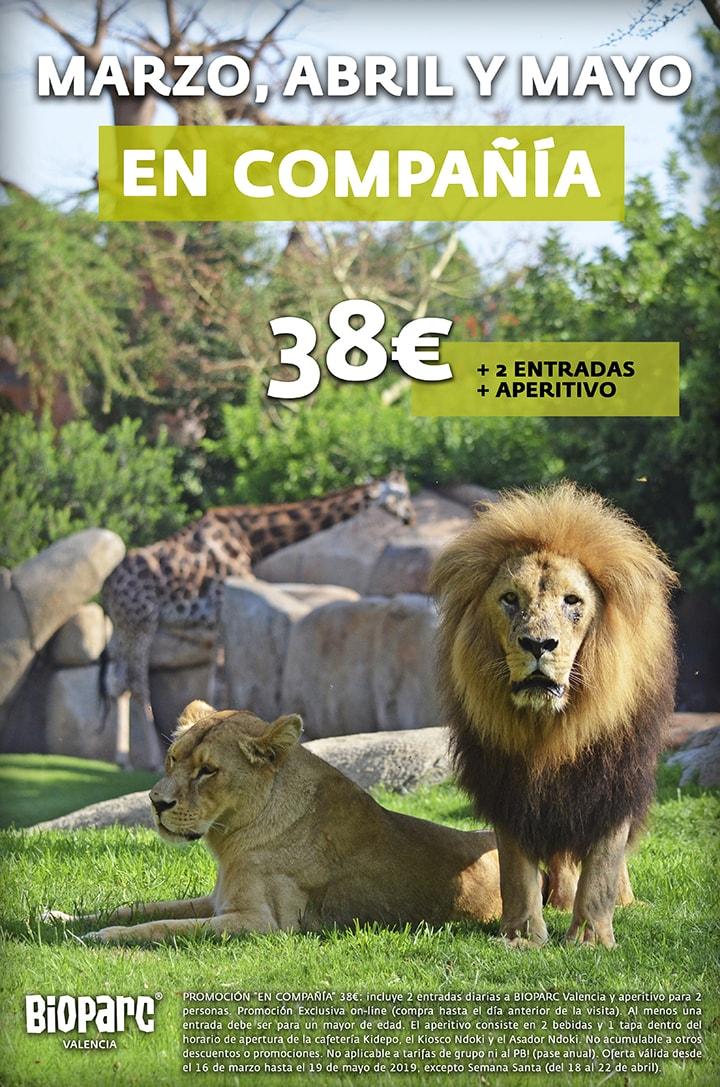 Promoción EN COMPAÑÍA - BIOPARC VALENCIA 2019
