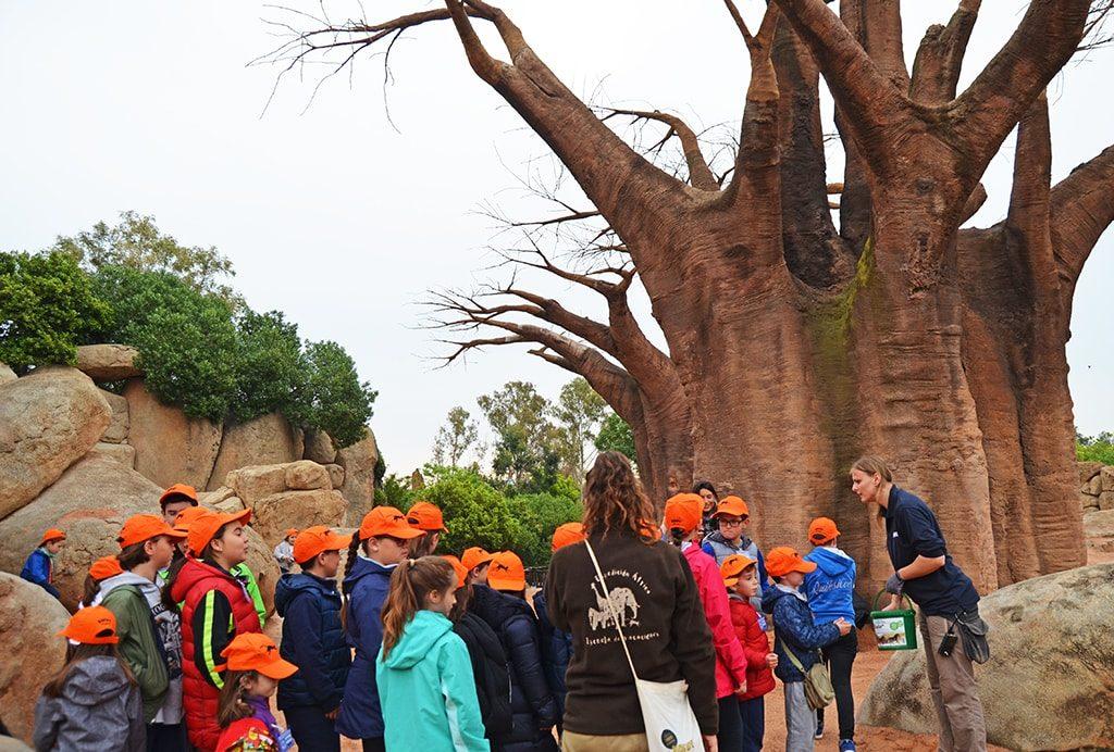 Expertos en elefantes - Expedición África Pascua 2019