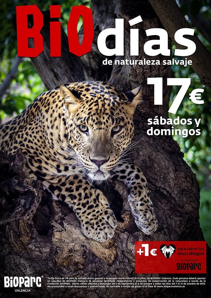 Promociones BIOdias 2019 BIOPARC Valencia