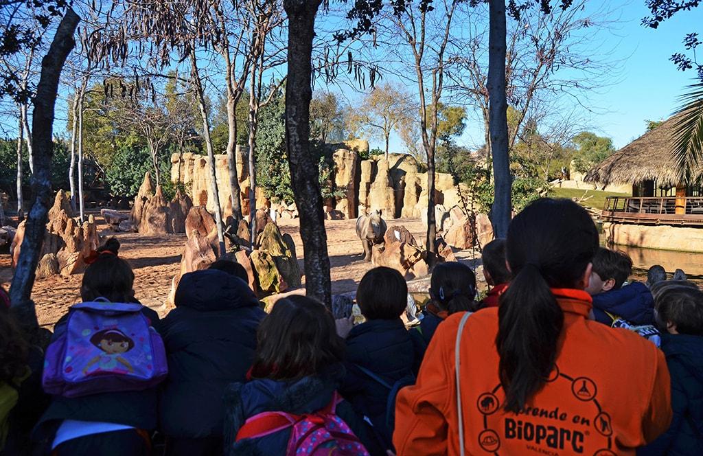 BIOPARC Valencia también empieza el nuevo curso con una oferta educativa llena de valor