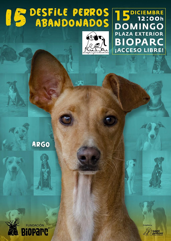 El 15º Desfile para adoptar perros abandonados de A.U.P.A y Fundación BIOPARC será el 15 de diciembre