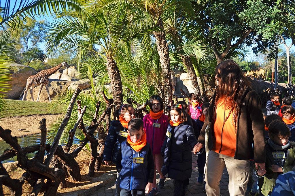 Expedición África Navidad - Escuela de Navidad de BIOPARC Valencia
