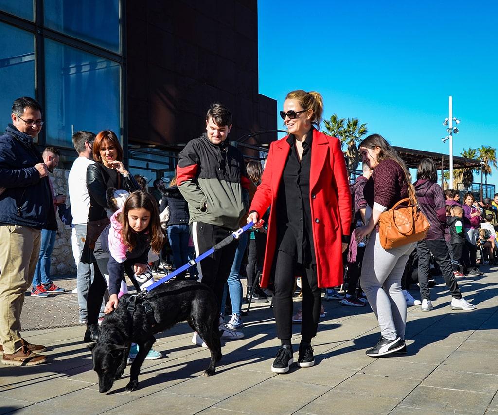 Carolina Ferre en el desfile solidario de perros abandonados