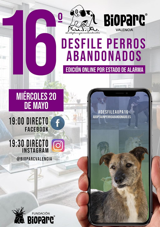 Cartel 16 desfile de perros abandonados AUPA BIOPARC Valencia