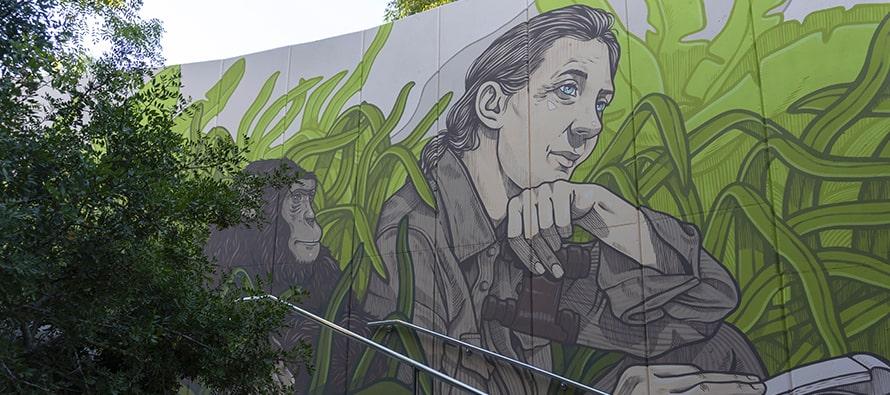 Mural de Jane Goodall