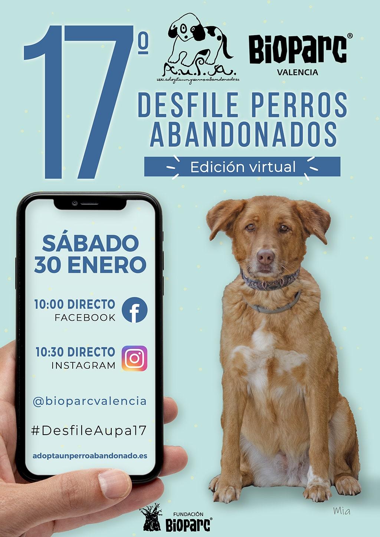 Cartel 17 desfile solidario de perros abandonados AUPA BIOPARC