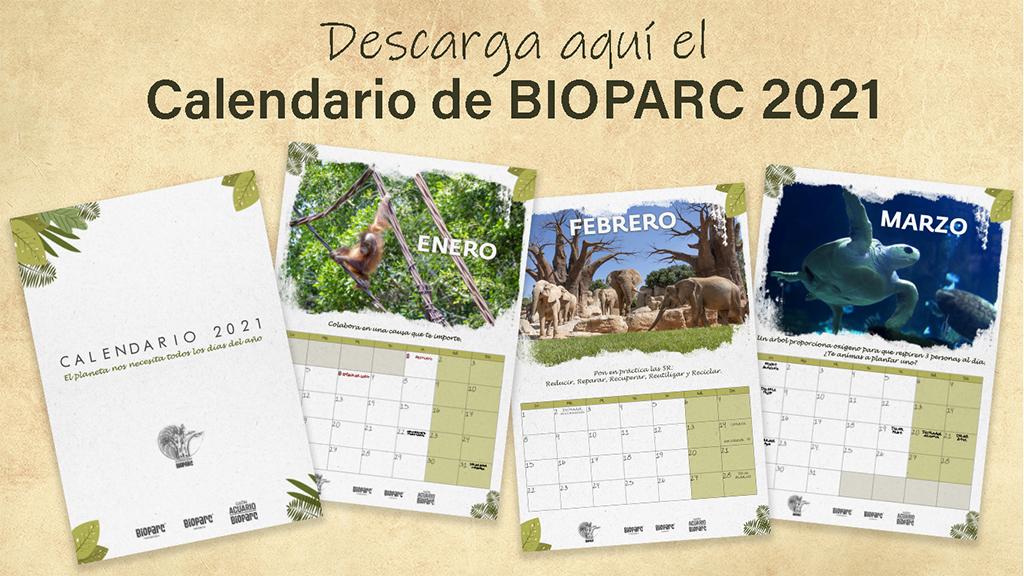 Calendario 2021 BIOPARC Valencia