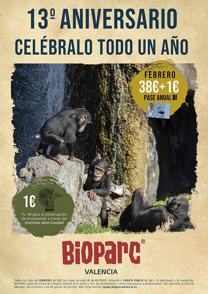 13 Aniversario BIOPARC Valencia