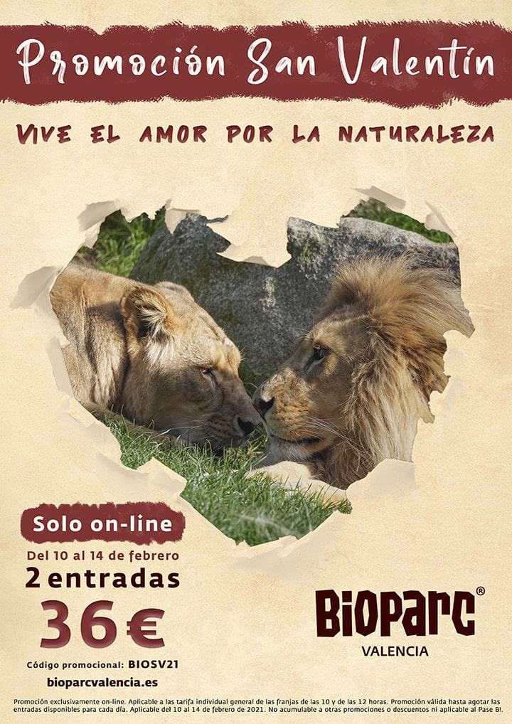 Promo San Valentin 2021 BIOPARC Valencia