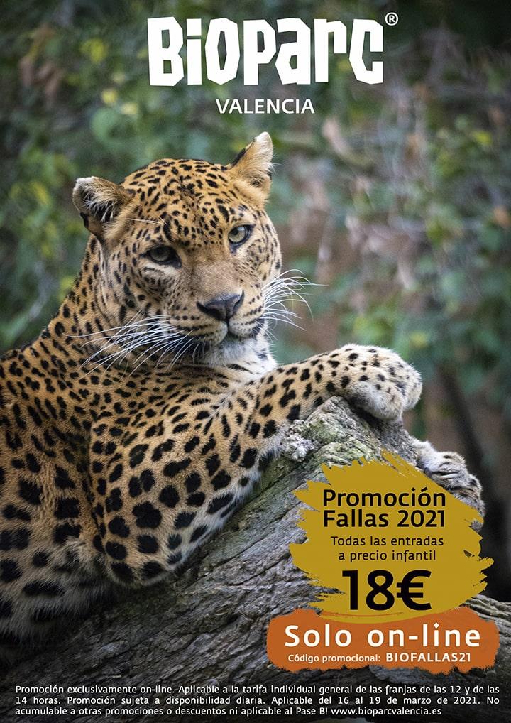 Promoción BIOPARC Valencia Fallas 2021