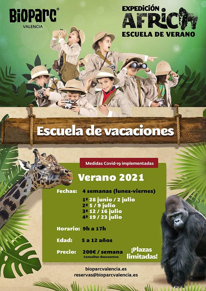 Escuela de verano 2021 de BIOPARC Valencia